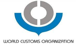 """WCO addresses the Annual Meeting of International Organizations on """"Facing Global Crises Together"""""""
